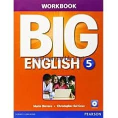 Big English (American English) 5 Workbook