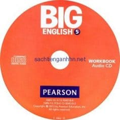 Big English (American English) 5 Workbook Audio CD