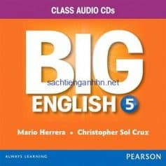 Big English (American English) 5 Class Audio CD B