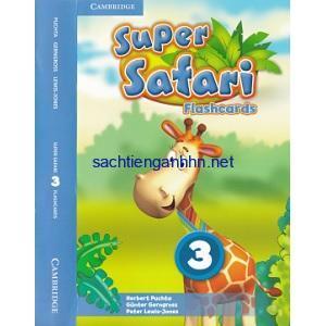 Super Safari British 3 Flashcards