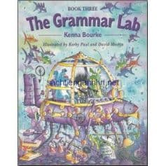 The Grammar Lab Book Three pdf ebook